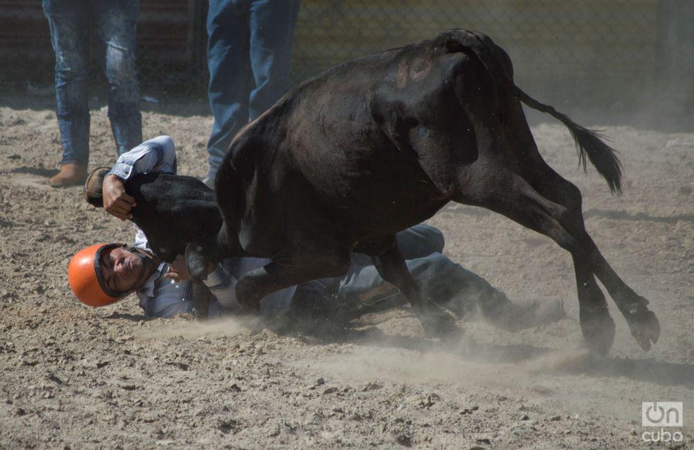 Rodeo- Otmaro Rodriguez (11)