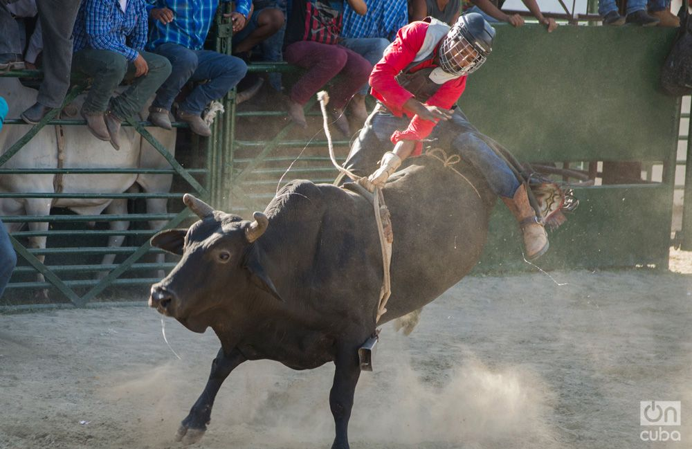 Rodeo- Otmaro Rodriguez (12)