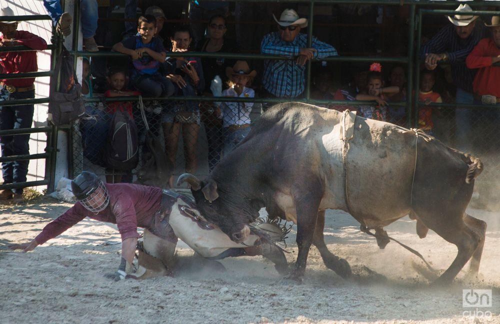 Rodeo- Otmaro Rodriguez (14)