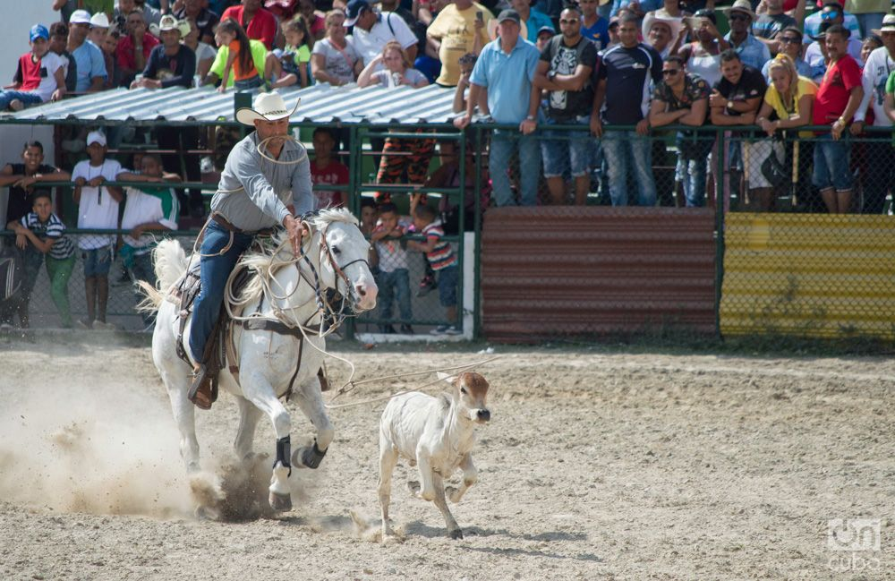 Rodeo- Otmaro Rodriguez (5)
