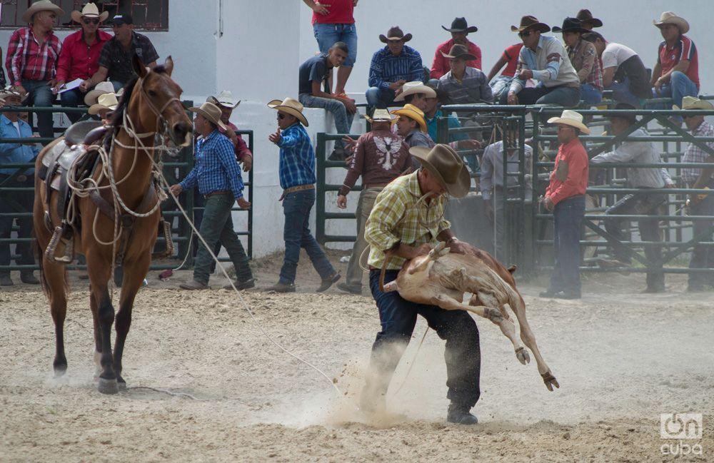 Rodeo- Otmaro Rodriguez (7)