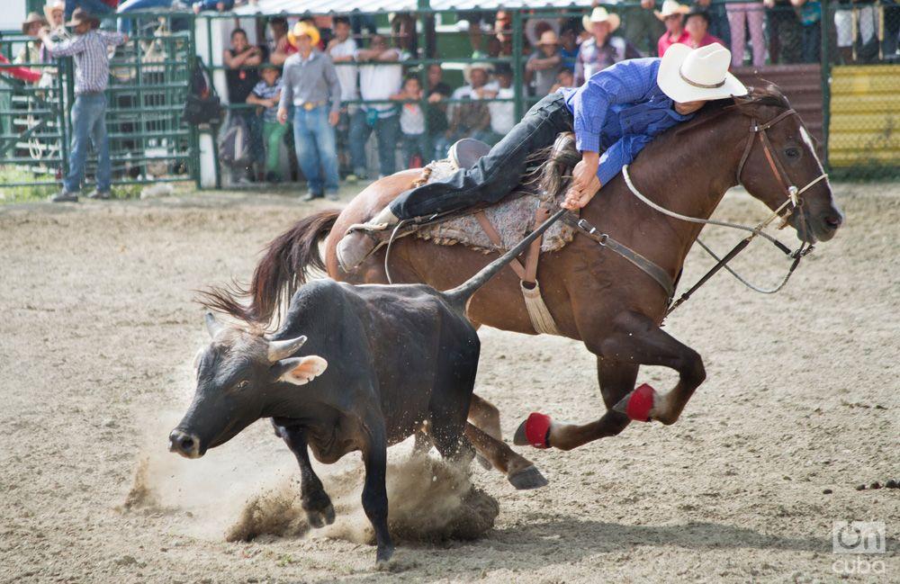 Rodeo- Otmaro Rodriguez (9)