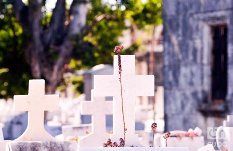 cementerio colon_luis gabriel (4)