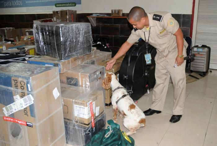 Anti-drug inspection of the Cuban General Customs Office. Photo: Ismael Batista / Granma / Archive.