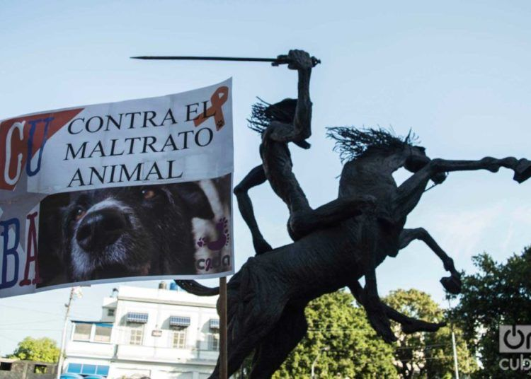 March against animal abuse, April 7, 2019 in Havana. Photo: Otmaro Rodríguez.
