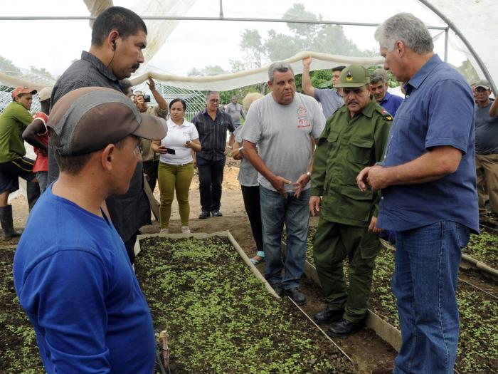 Cuban President Miguel Díaz-Canel on a tour of an agricultural enterprise. Photo: Estudios Revolución / Archive.