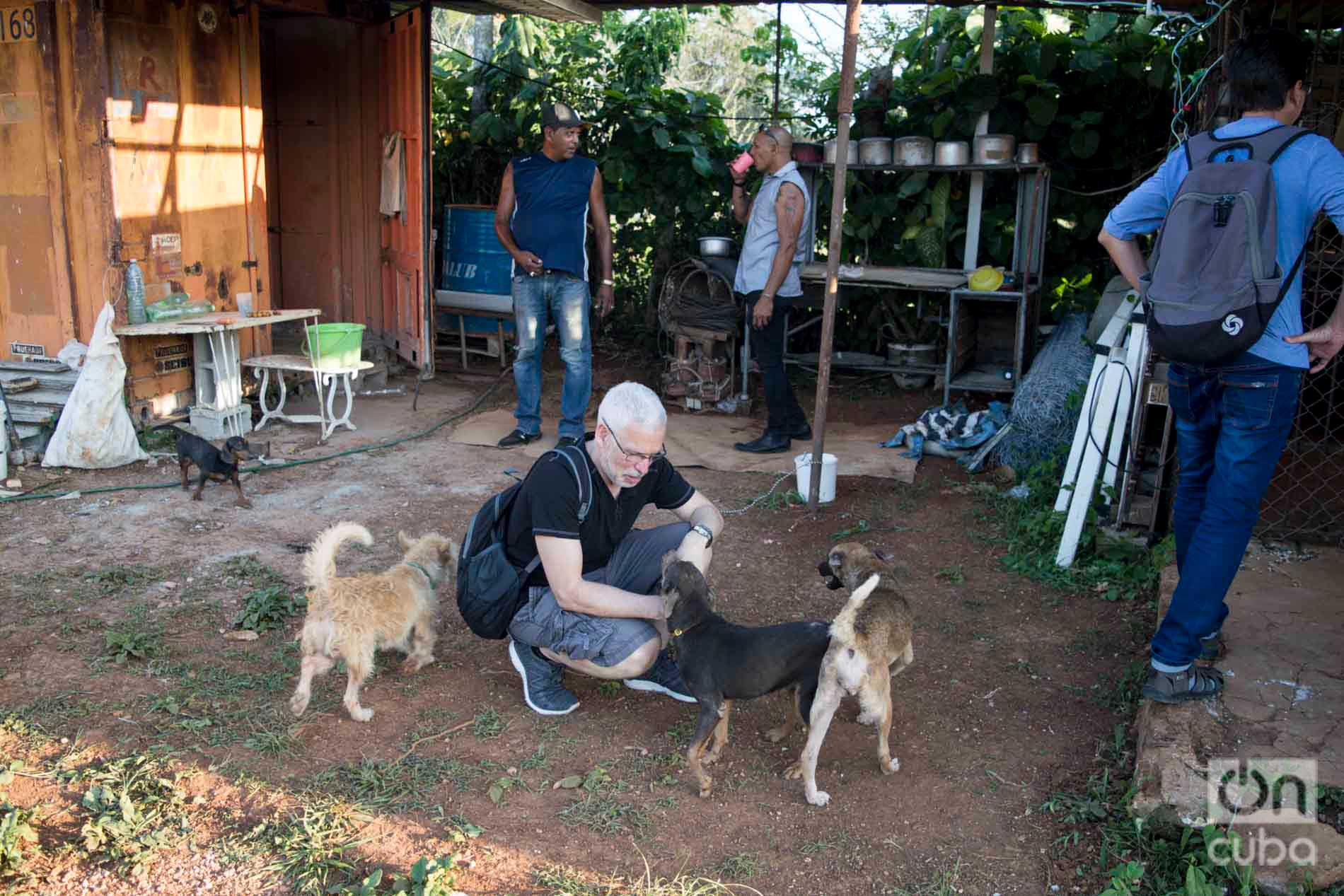 David Guggenheim (crouching), founder and director of Ocean Doctor, in the dog shelter of Venus and Ernesto, west of Havana. Photo: Otmaro Rodríguez.