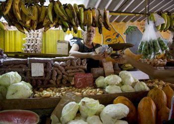 A saleswoman counts money after selling some vegetables to a customer at her stand in Havana. Photo: Ismael Francisco / AP / Archive.
