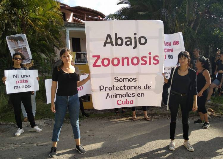Cuban protectors protest against animal abuse in front of a center of the state Zoonosis program, on Monday, November 11, 2019. Photo: Beatriz Batista's Facebook profile.