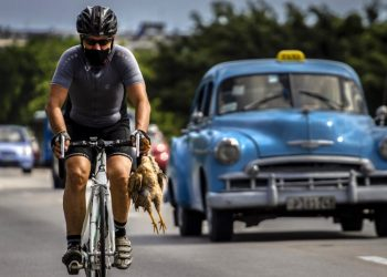 A cyclist wearing a mask as a precaution against the spread of the new coronavirus carries a chicken in his hand while pedaling his bicycle in Havana, Cuba, on Sunday, October 11, 2020. Photo: Ramón Espinosa/AP.