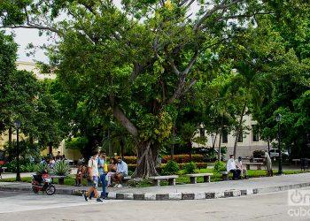 Plaza Cadenas at the University of Havana. Photo: Otmaro Rodríguez/Archive.