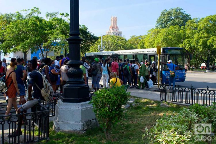 People at an urban bus stop in Parque de la Fraternidad, in Havana. Photo: Otmaro Rodríguez.