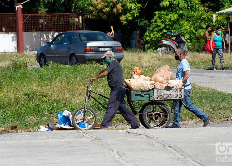 People transporting goods during the outbreak of COVID-19 in Havana, in January 2021. Photo: Otmaro Rodríguez.