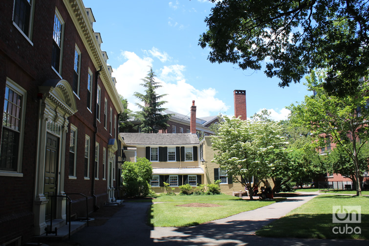 Harvard University was founded in 1636. Photo: Milena Recio.