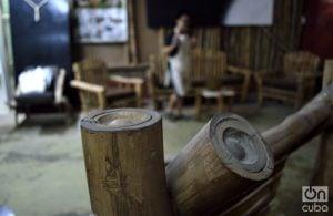 La utilización de esta materia generaría fuentes de empleo y ahorro de importaciones. Foto: Otmaro Rodríguez.