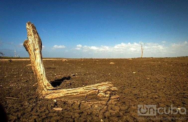 Reserva de Fauna Desembocadura del Río Máximo