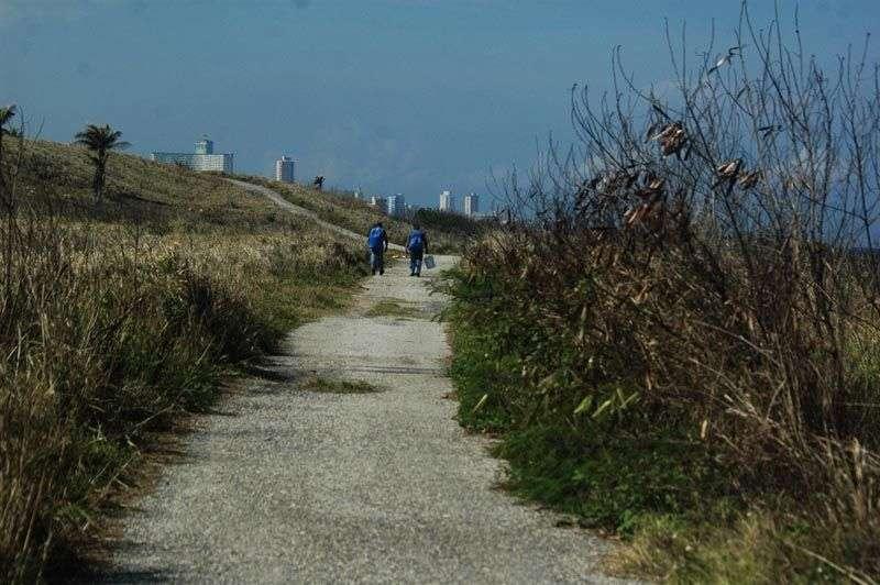 Carretera por la que tiene acceso el carro patrullero a la Playa / FOTO: Cortesía del autor