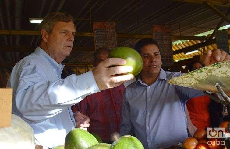 Un dato curioso: el Secretario de Agricultura no compró ningún producto, aunque pareció interesado en los aguacates / Foto: Marita Pérez Díaz