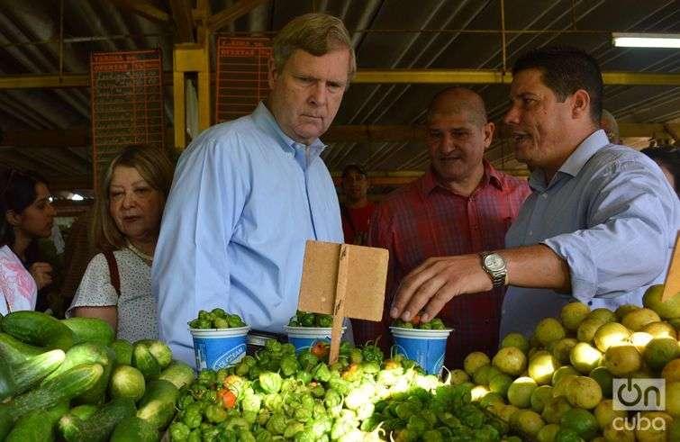 A Vilsack le impresionaron los limones criollos y la historia de que se pueden sembrar en los patios de las casas / Foto: Marita Pérez Díaz