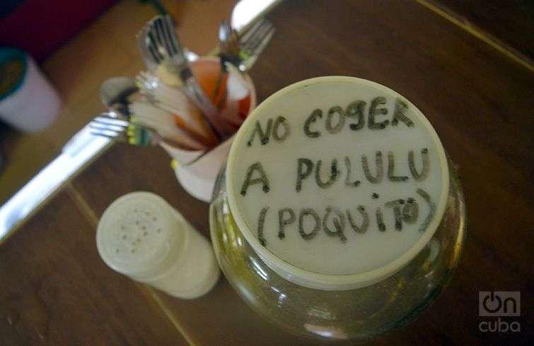 Foto: Alba León Infante