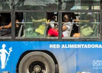 Foto: Alain L. Gutiérrez Almeida.
