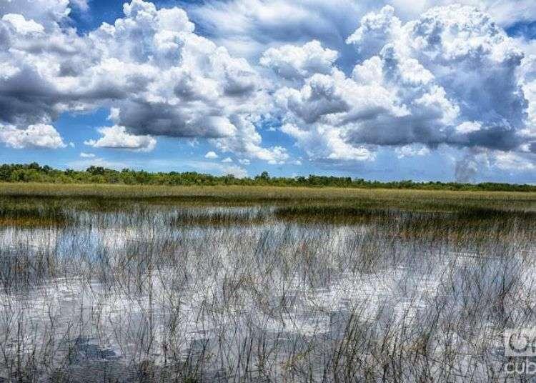 Everglades, durante el dominio españo llamado Cañaveral de la Florida. Foto: Sergio Cabrera.
