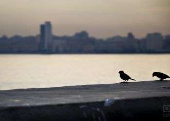 Aniversario 497 de La Habana. Foto: Amílcar Pérez Riverol.