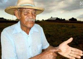 Roberto Rodríguez, curandero pinareño. Foto: Ronald Suárez.