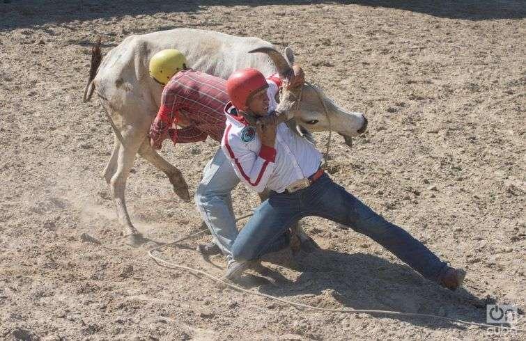 Rodeo-otm-15