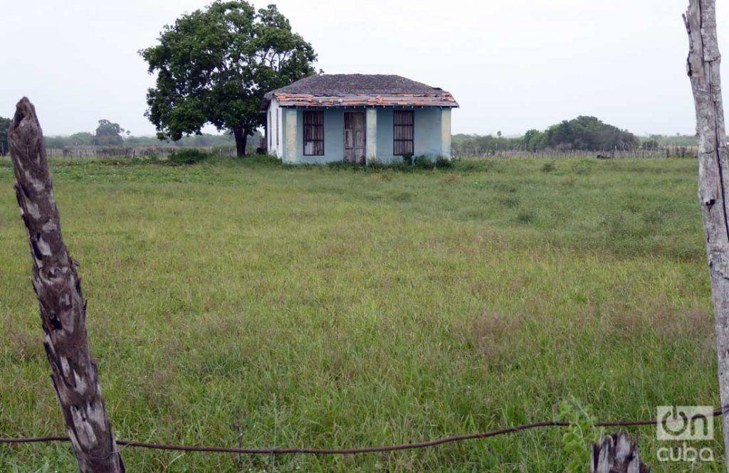 La misteriosa construcción está ubicada a unos 100 metros de la carretera, en la zona conocida como Palmarito. Foto: Ronald Suárez.