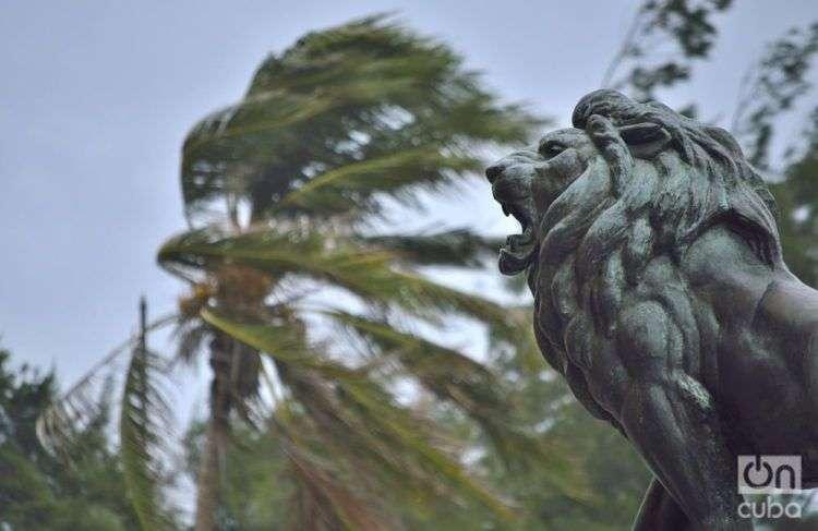 La Habana después de Irma. Foto: Otrmaro Rodríguez.