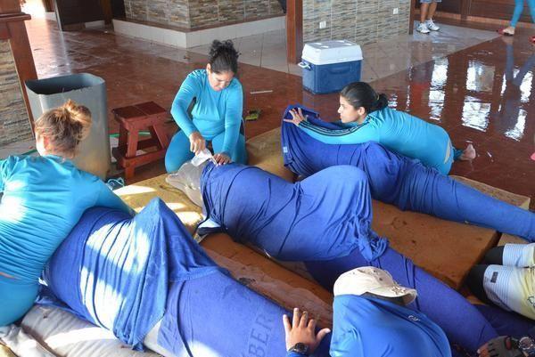 Traslado de los delfines del Centro Recreativo Delfinario Cayo Guillermo, para su traslado hacia el de la provincia de Cienfuegos. FOTO: Osvaldo Gutiérrez/ ACN.