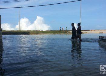 En la Habana, después del huracán Irma. Foto: Eduardo González Martínez.