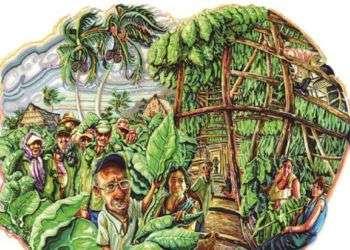 """Una de las ilustraciones de Roberto Sánchez Terreros para el libro """"Cuba y el Tabaco"""". Foto: El Mundo."""