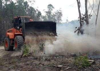 Incendio forestal en Pinar del Río. Foto: Daimí Díaz Breijo / Tele Pinar.