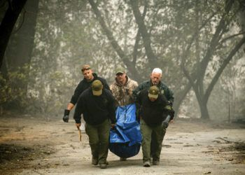 Agentes del sheriff cargan restos humanos en un barrio destruido por un incendio forestal el sábado 10 de noviembre de 2018, en Paradise, California. Foto: Noah Berger / AP.