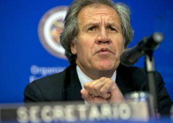 Luis Almagro, secretario General de la OEA. Foto: AP.