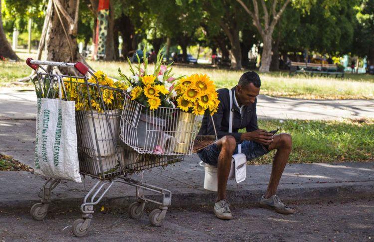 Un vendedor de flores se toma un descanso para navegar en internet con su teléfono móvil en La Habana, Cuba, el 6 de diciembre de 2018. Foto: Desmond Boylan / AP.