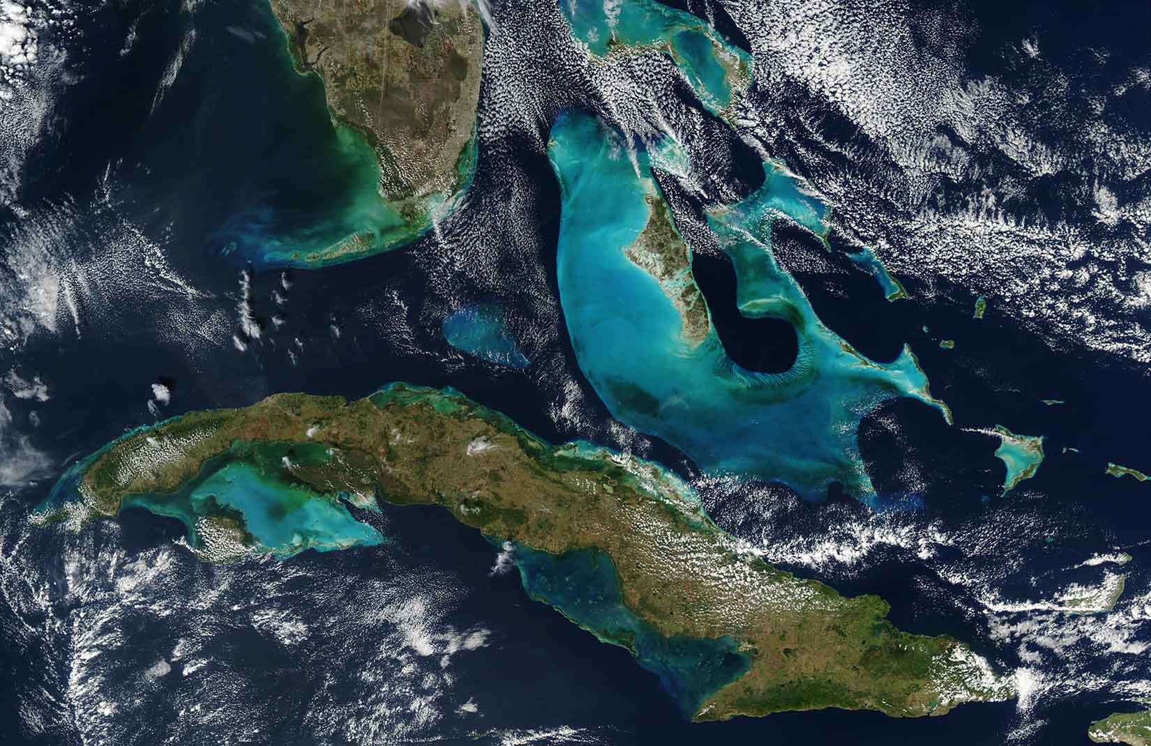 сколько процентов поверхности занимает мировой океан