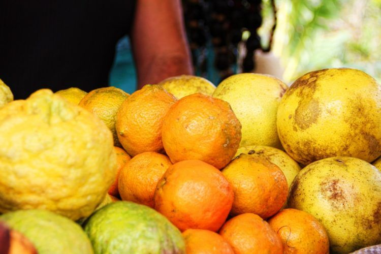 ¿Por qué no permitir cooperativas de segundo grado para la exportación de frutas desde Cuba Foto: pxhere.com