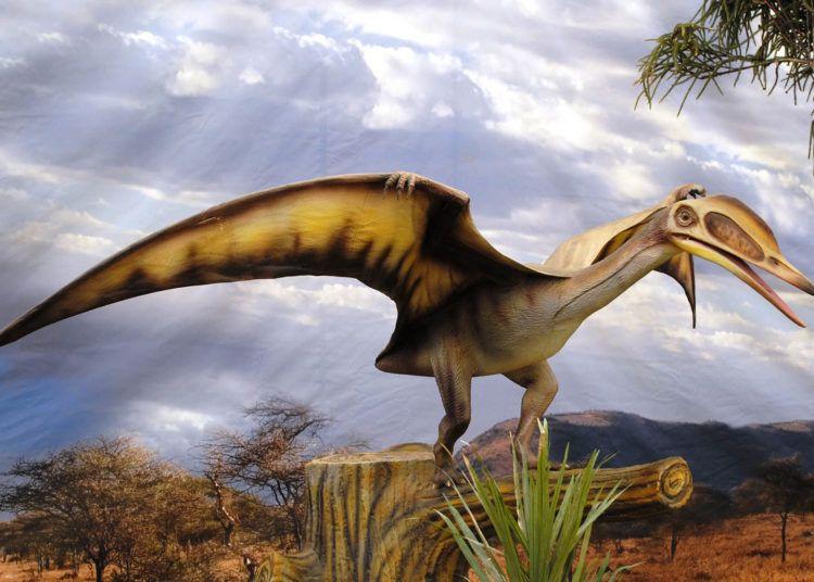 Reconstrucción artística de un pterosaurio. Imagen: geofrik.com