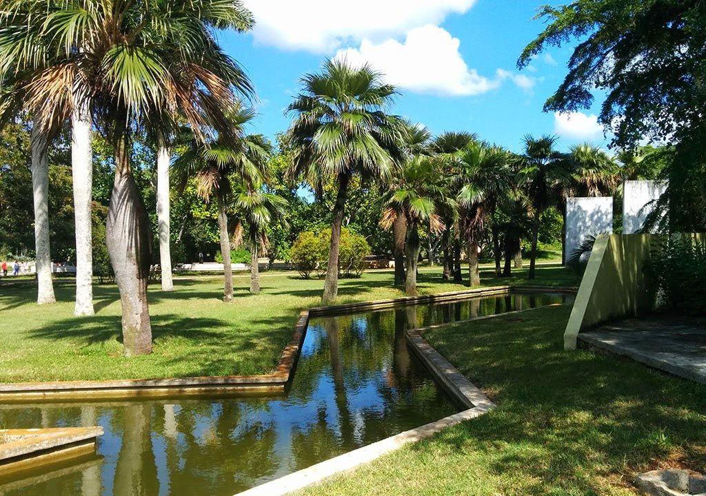 Jardín Botánico Nacional de Cuba, en La Habana. Foto: naturalezatropical.com