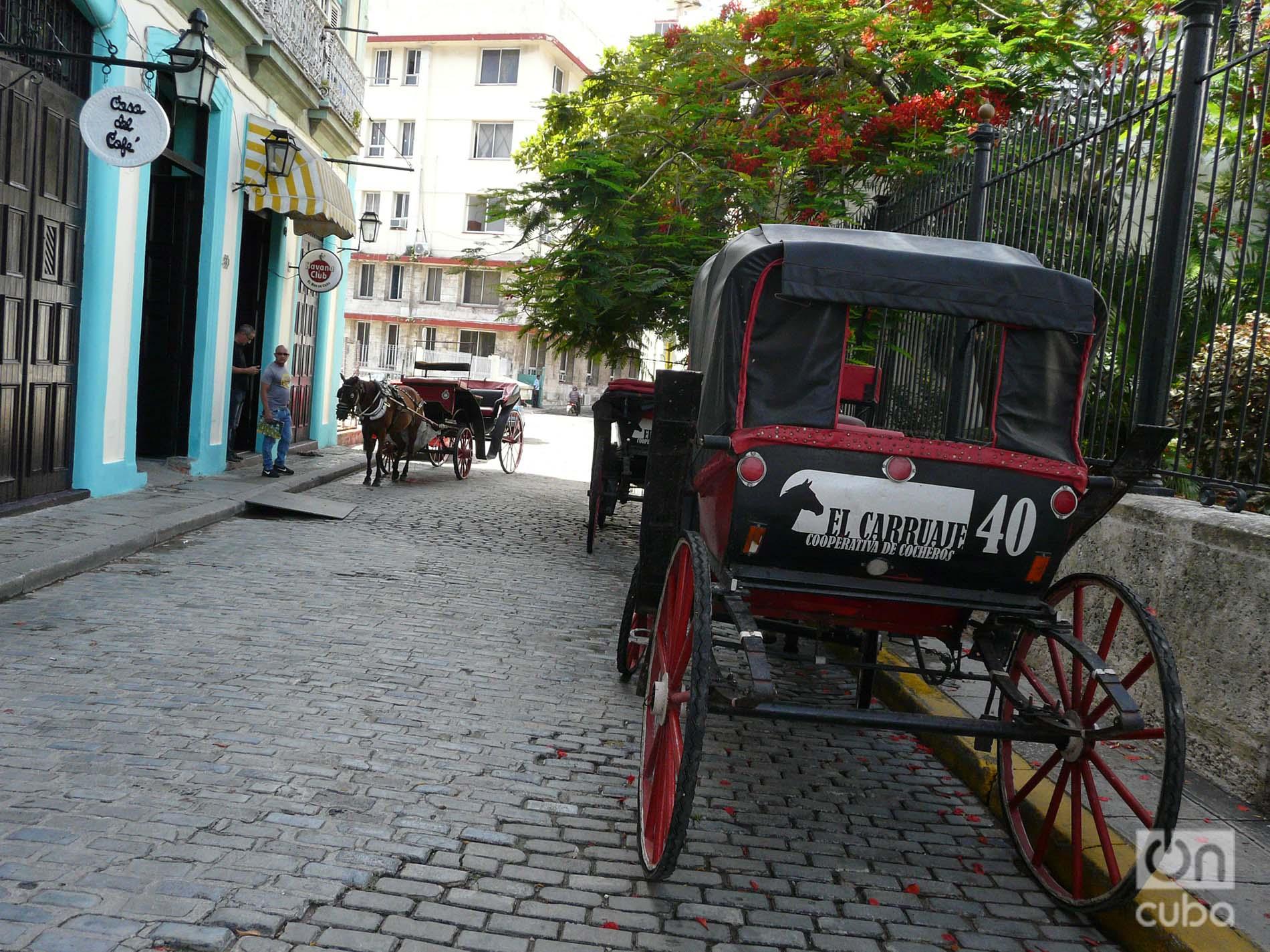 Coches ociosos en la Habana Vieja. Foto: Ángel Marqués Dolz.