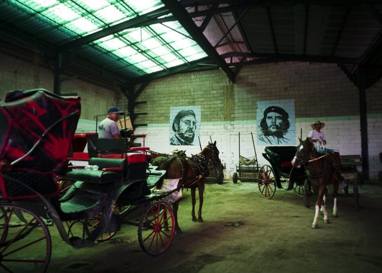 """Carruajes tirados por caballos que se usan para dar paseos a los turistas, estacionados en el garaje de una cooperativa, bajo los murales de Fidel Castro y Ernesto """"Che"""" Guevara, en La Habana, Cuba. Foto: Ramón Espinosa / AP."""