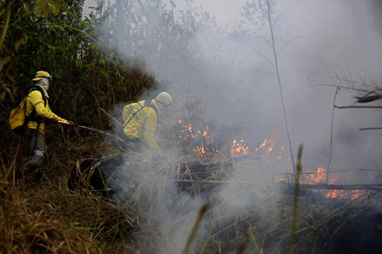 Bomberos combaten un incendio en el Bosque Nacional Jacundá en la región de la Amazonía, Brasil, el lunes 26 de agosto de 2019. Foto: Eraldo Peres / AP.