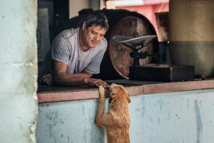 """""""Un momento tierno entre un bodeguero y un perro callejero"""". Centro Habana, La Habana. Foto: Emmy Park. Todos los derechos reservados."""