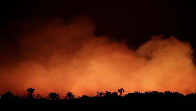 Incendio en la Amazonía. Foto: Telesur.