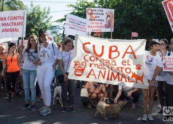 Marcha contra el maltrato animal en abril de 2019 en La Habana. Foto: Otmaro Rodríguez.