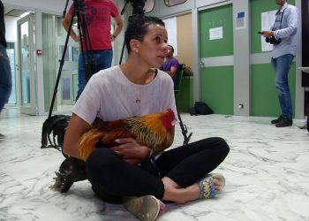 La francesa Corinne Fesseau sentada en el tribunal sostenido su gallo durante un juicio en Saint-Pierre-d'Oleron, Francia, el jueves 5 de septiembre de 2019. Foto: Imagen tomada de un video proporcionado por la televisora BFMTV vía AP.