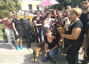 Activistas cubanos que rescataron a animales que iban a ser sacrificados en La Habana por la dependencia estatal Zoonosis, el 11 de noviembre de 2019. Foto: Beatriz Batista / Facebook.